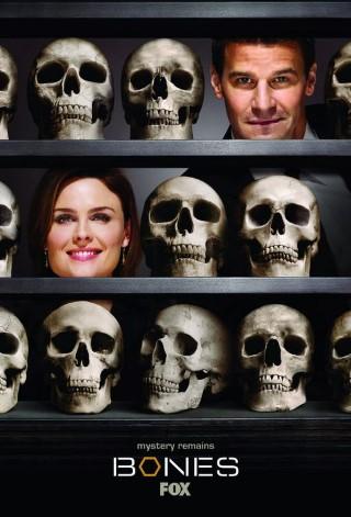 Bones - image