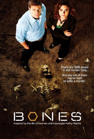 Bones - photo