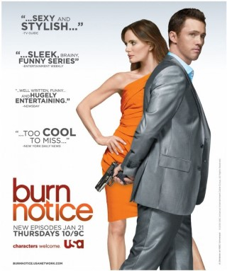 Burn Notice - image