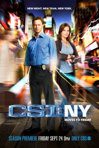 CSI New York - picture