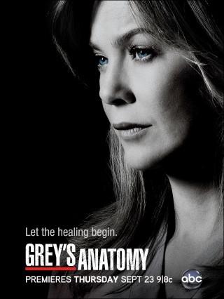 Grey's Anatomy - image