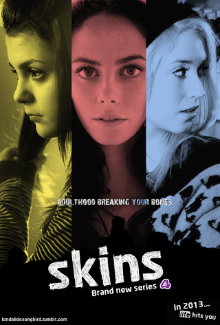 Skins - image