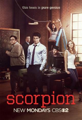 Scorpion - image